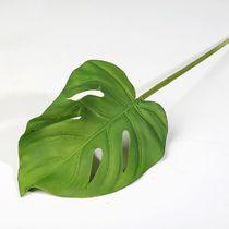 Single Monstera Leaf