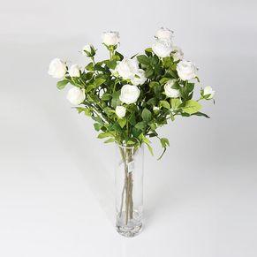 Single Poland Rose White 5 Head