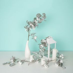 Silver Eucalyptus Branch
