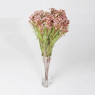 Single Plum Blossom 3 Head