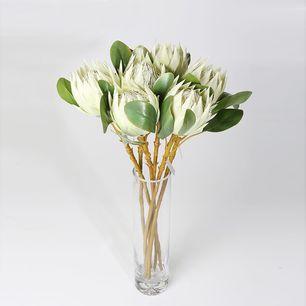 Single Protea Cynaroides