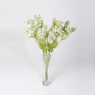Single White Lace Flower