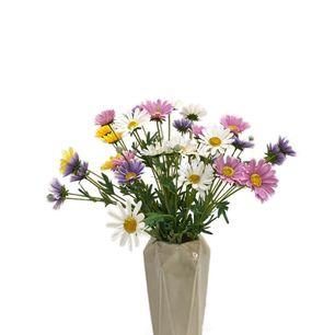Single Mexican Chrysanthemum 5 Head